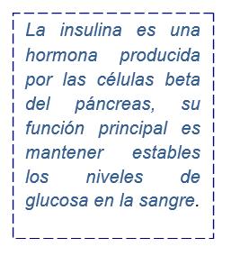 Yakult México » ¿Qué es la resistencia a la insulina?