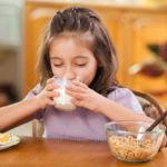 Los lácteos como parte de una alimentación saludable