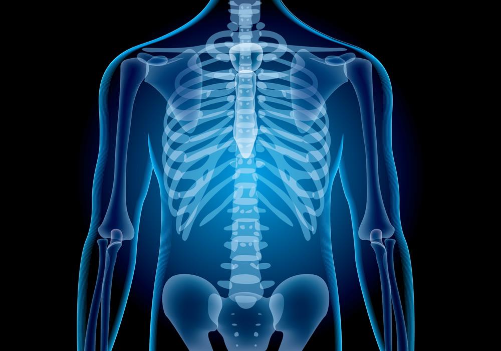 Consejo para mantener la salud ósea en los hombres – Yakult